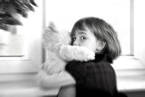 DuPage County family law attorney, domestic violence