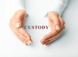 DuPage County family law attorneys, sole custody