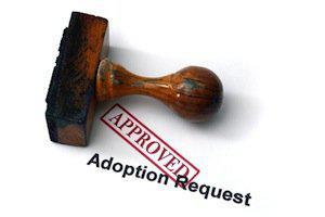 DuPage County adoption attorneys, Illinois adoption registry